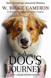 Film Night - A Dog's Journey